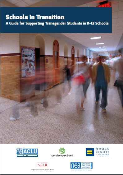 Schools in transition report cover
