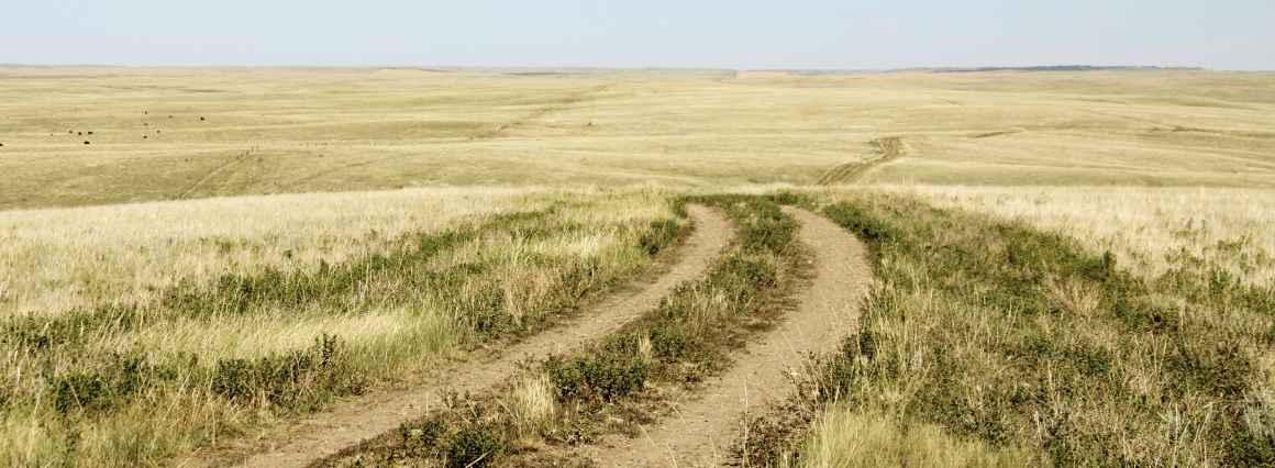 image of rural dirt road